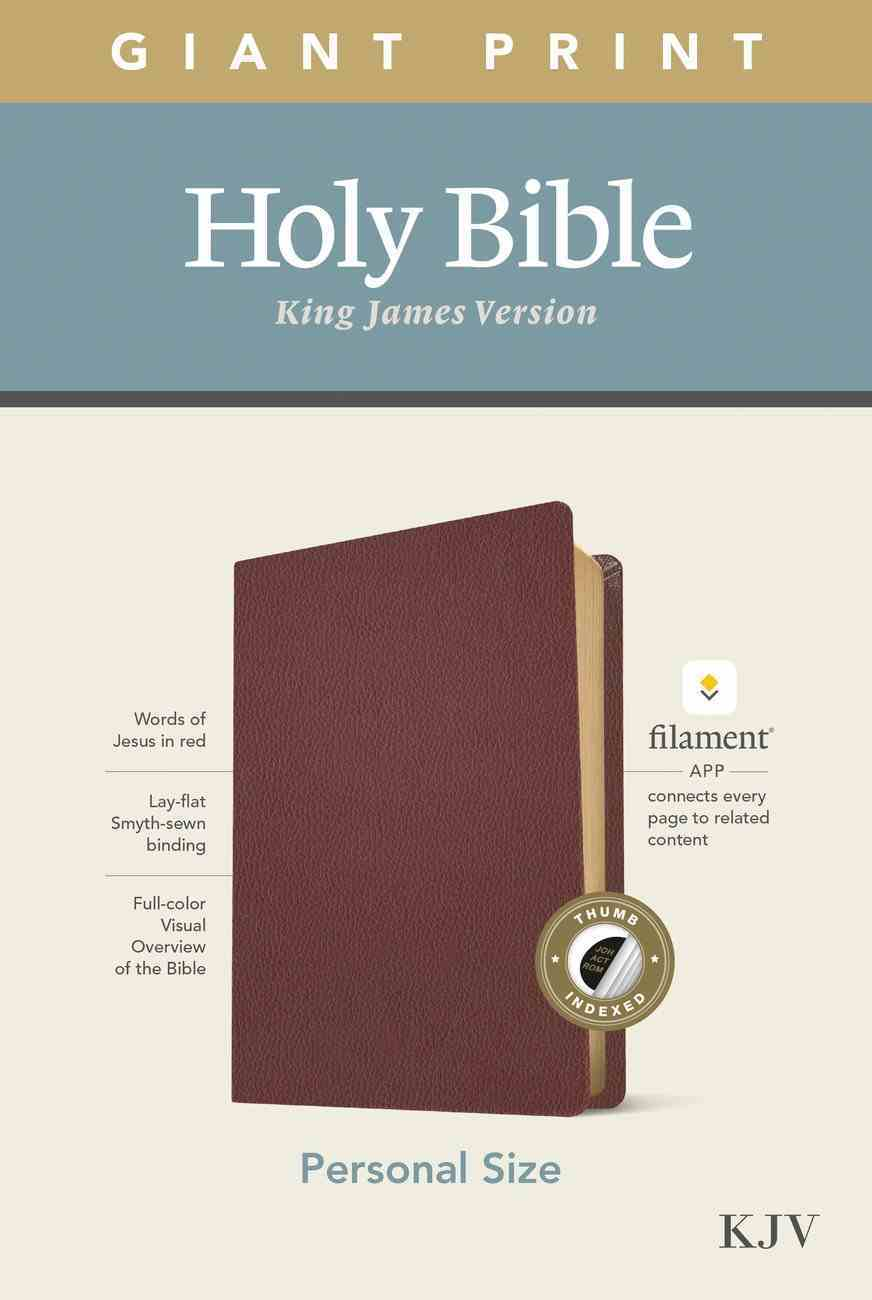 KJV Personal Size Giant Print Bible Filament Enabled Edition Indexed Burgundy (Red Letter Edition) Genuine Leather