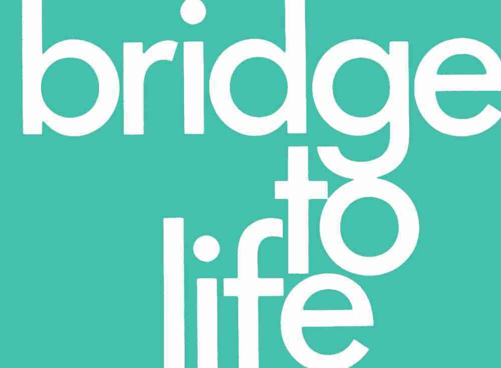 Bridge to Life (25 Pack) (Green) Booklet