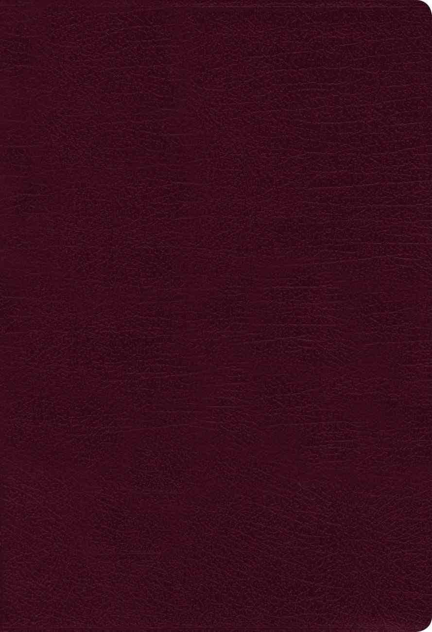 NASB Thinline Bible Large Print Burgundy 1995 Text Thumb Index (Red Letter Edition) Bonded Leather