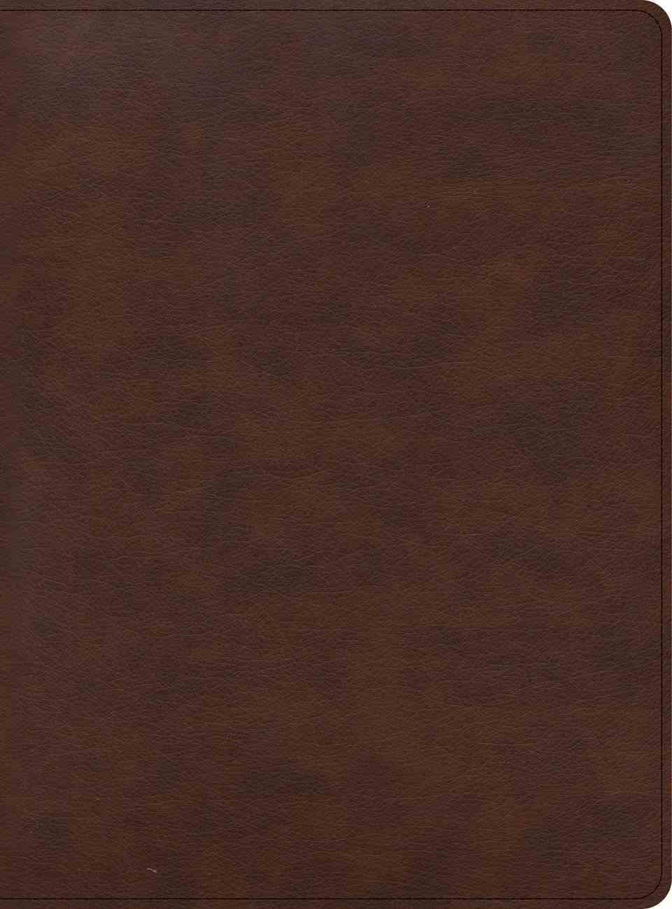 CSB Apologetics Study Bible For Students Brown (Black Letter Edition) Imitation Leather