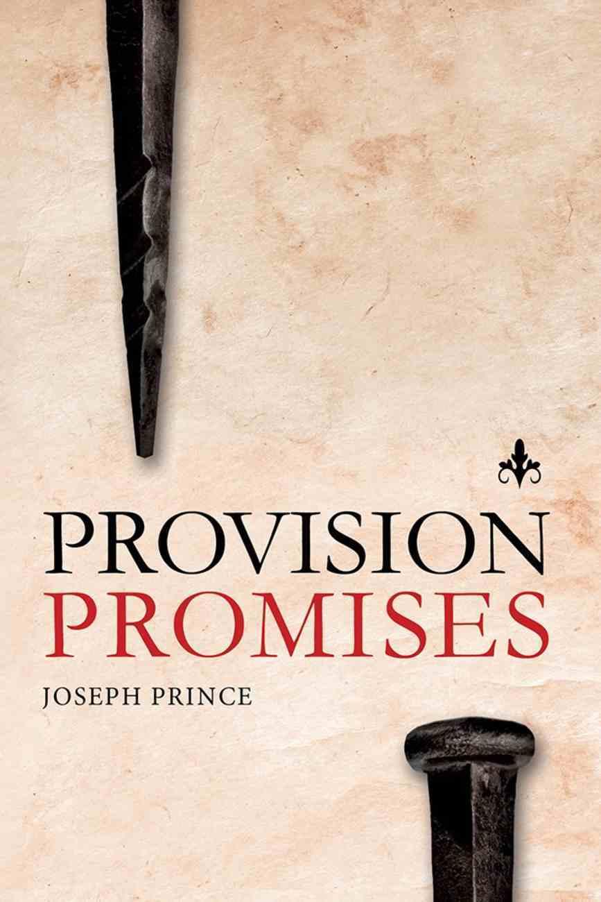 Provision Promises Paperback