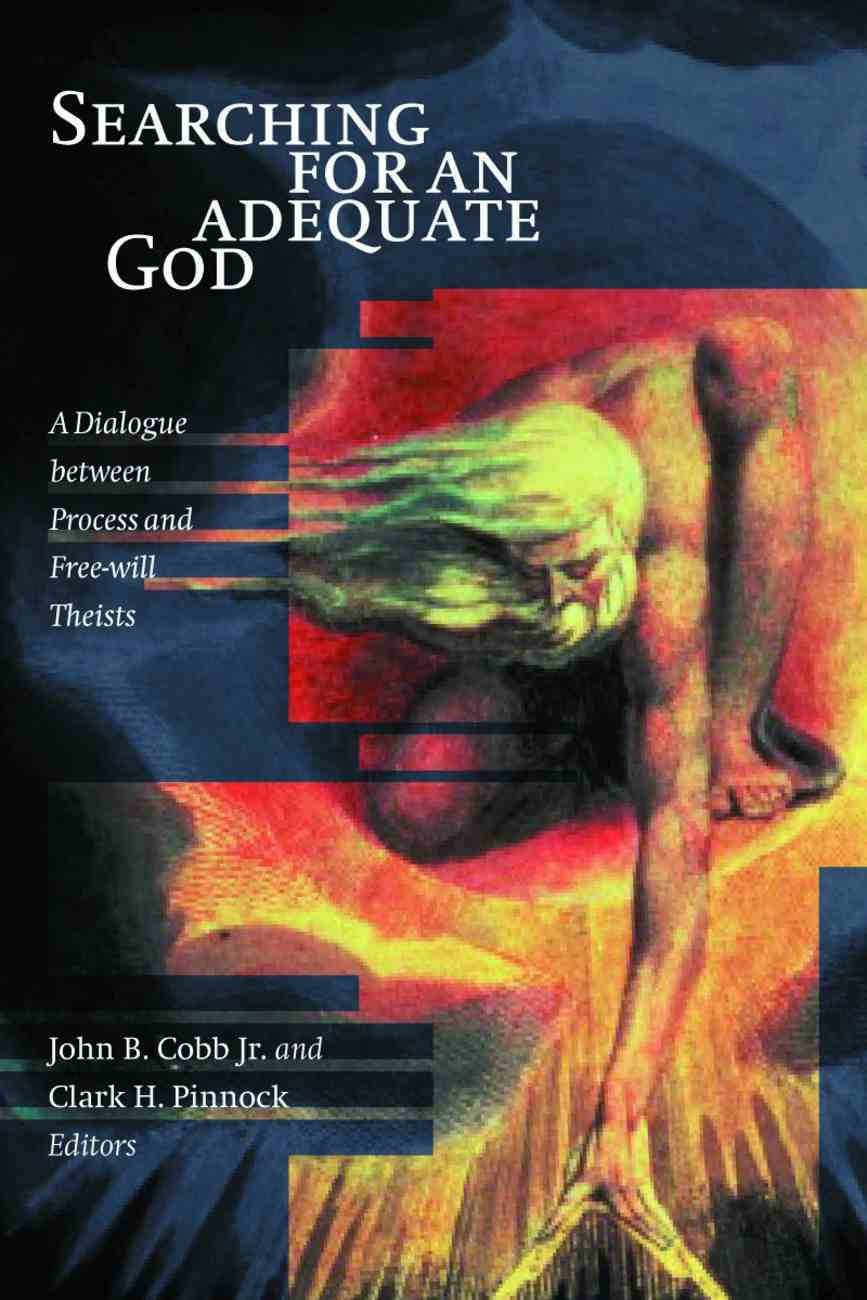 Searching For An Adequate God Paperback