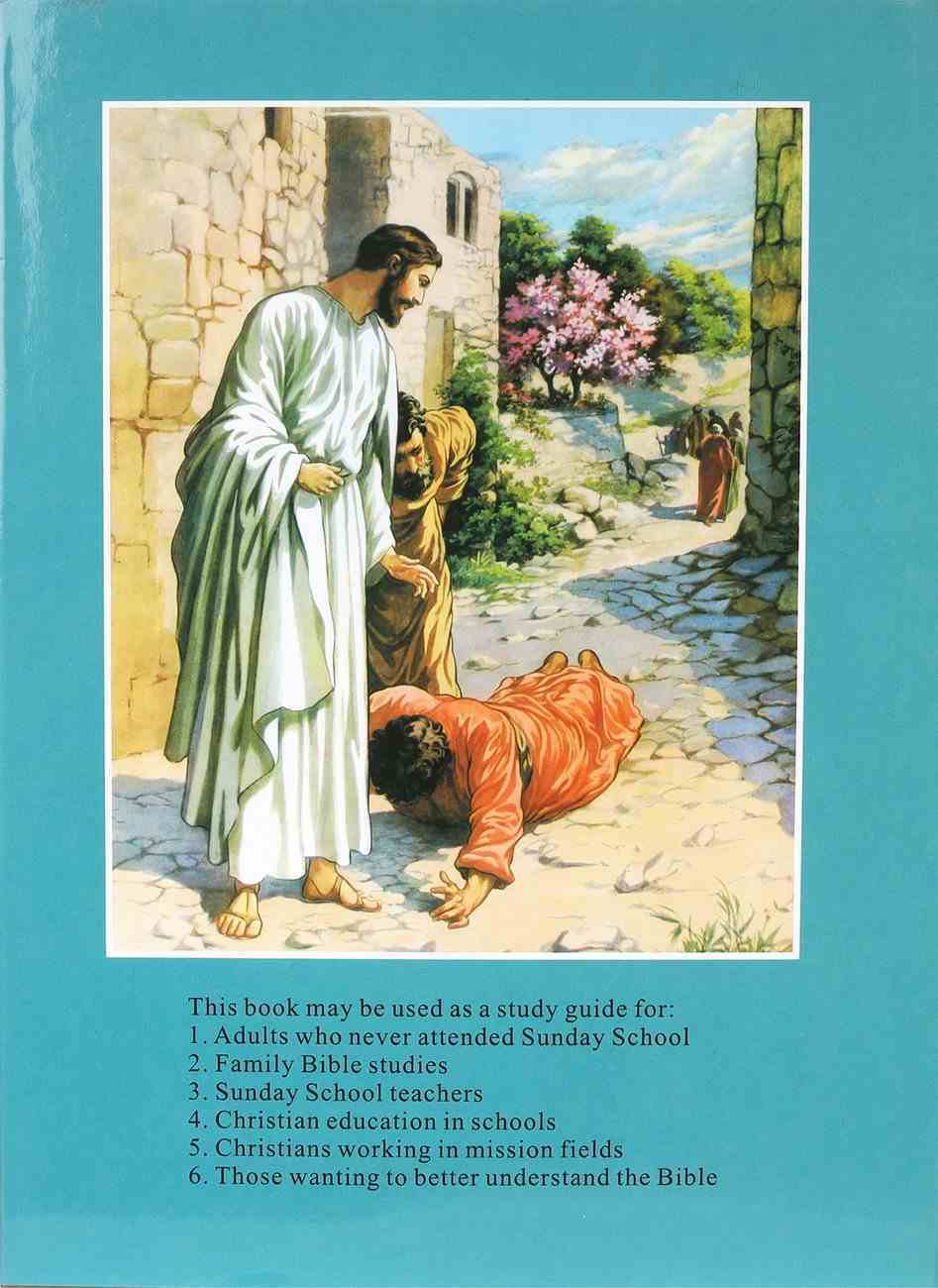The Bible in Pictures Hardback