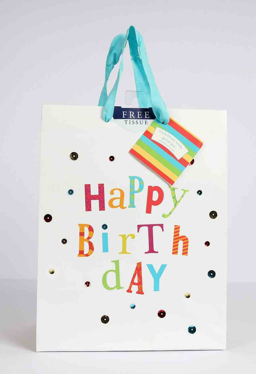 Gift Bag Medium: Birthday Fun (Incl Two Sheets Tissue Paper & Gift Tag) Stationery