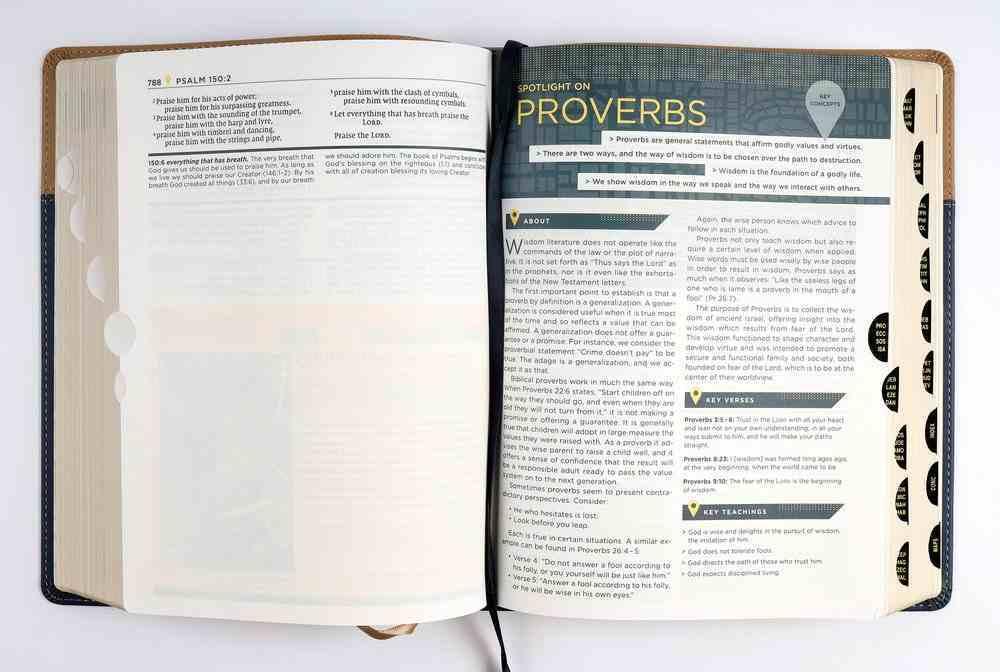 NIV Starting Place Study Bible Indexed Blue/Tan Premium Imitation Leather
