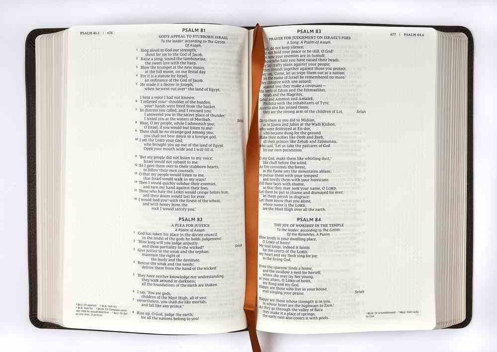 NRSV Catholic Bible Journal Edition Brown (Anglicised) Premium Imitation Leather