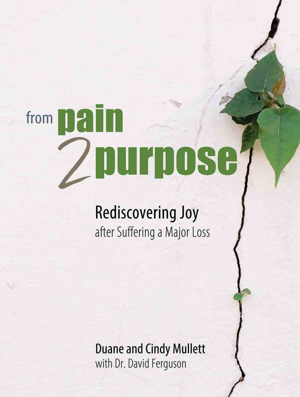 From Pain 2 Purpose: Rediscovering Joy After Suffering a Major Loss Paperback