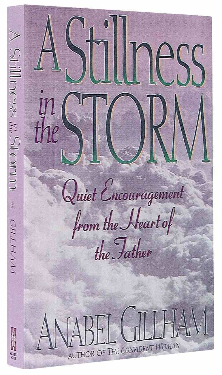 Stillness in the Storm Paperback